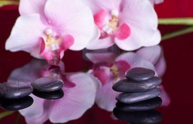 massage-599476_640